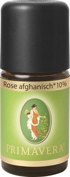 Rose afghanisch* bio 10 % 5 ml